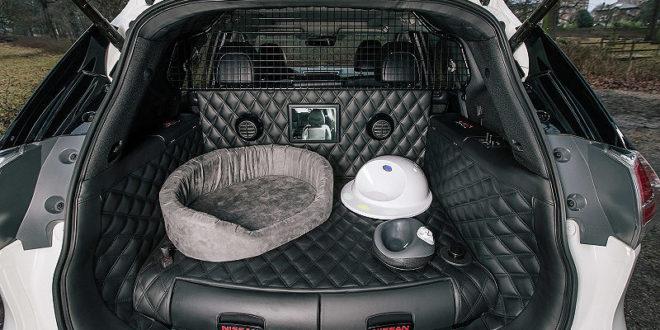 Auto mit integrierter Hunderampe – Nissan X-Trail4Dogs
