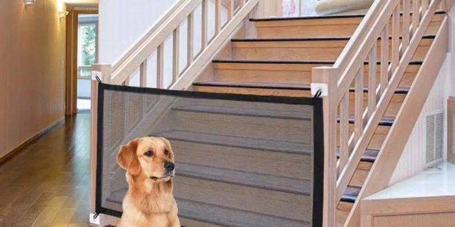 Treppengitter für Hunde